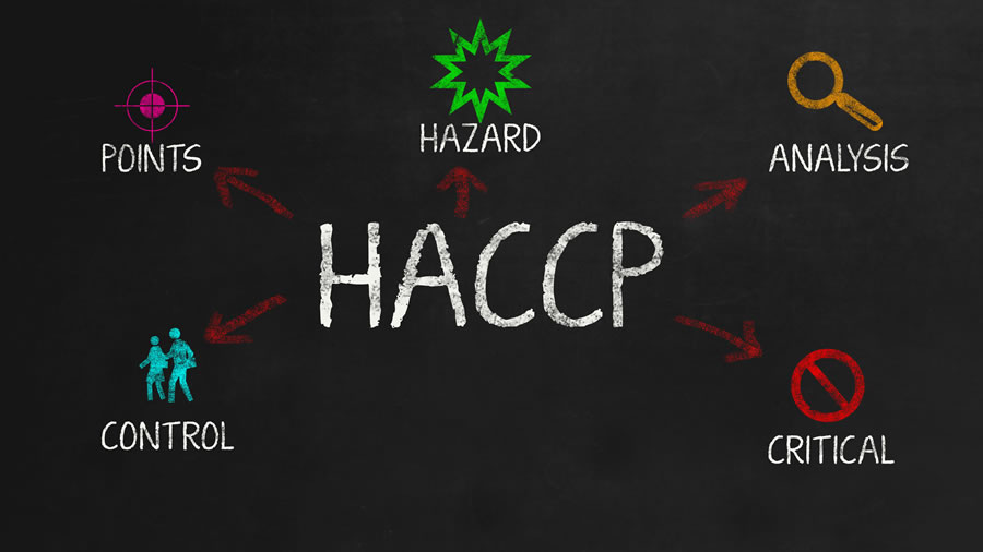 HACCPが義務化!何が変わる?すべきことは?